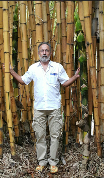 Consultoria Agropecuaria Sergio Cabral